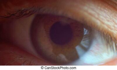 Extreme Close-up Male Human Eye Blinking