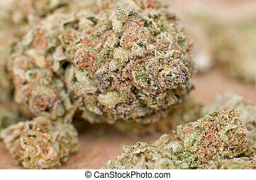 Extreme close-up of dry marijuana bud with very shallow DOF