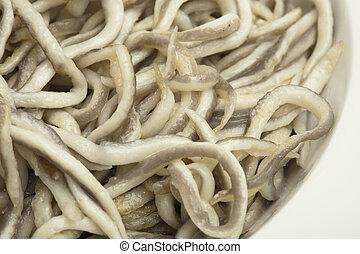 eels - extreme closeup of a spanish eels texture