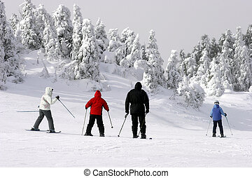 Extreme Cold Skiing 2
