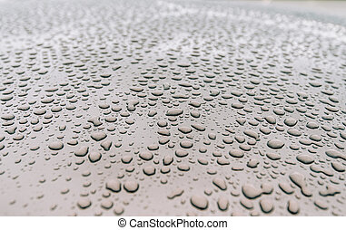 water drops after heavy rain and dew water repellent