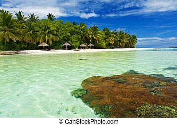 Extreme paradise - Beautiful tropical paradise in Maldives...