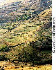 extreme terrain modified for agriculture, near Rimetea, ...