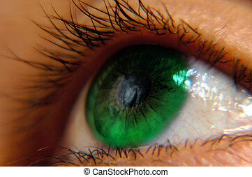 Eye 3b - Green female eye macro image