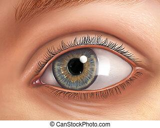 External view of an healthy human eye. Digital illustration.