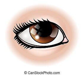 Eye Body Part - An illustration of a human eye body part