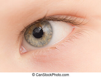 eye. close-up