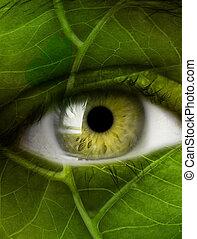 eye leaf
