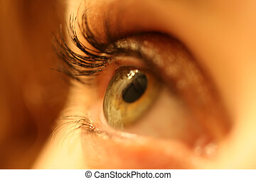 Eye Makeup - Close up of a woman's eye with make-up