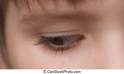 Eye of Child. Extreme Close Up Eyes of Cute Caucasian Little...