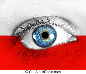 eye of the fan with flag