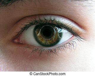 Eye, close up