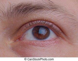 Eye pupil and eyelid