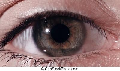 Eye pupil reaction to light. Humans eye macro shot with...