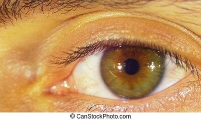 Eye Sight. Human Eye Blinks. Close-up of man eye that blink,...