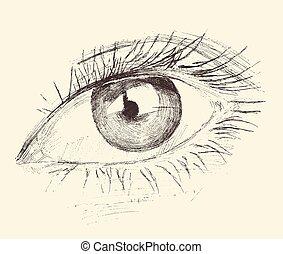Eye, Sketch, Hand Drawn, Engraved, Illustration