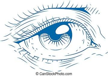 Eye. Vintage engraving