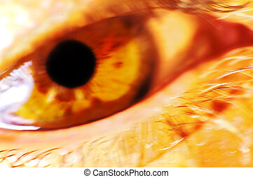 Eye With Color and Blur Effect.