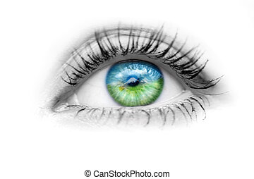 Eye with nature in the eyes