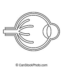 Eyeball icon, outline style - Eyeball icon. Outline...