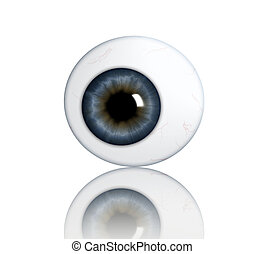 eyeball on white background taken 5 May 2009