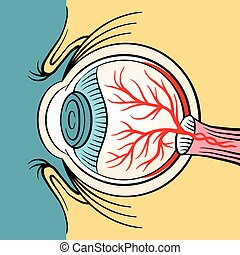 Eyeball x ray vector cartoon illustration