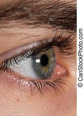 eyes., αρσενικό , macro