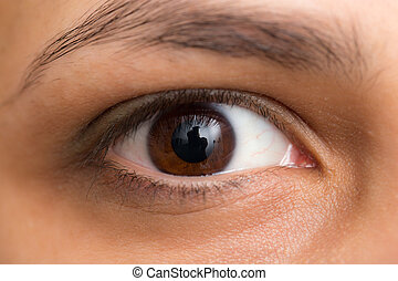 eyes., nocciola, macro