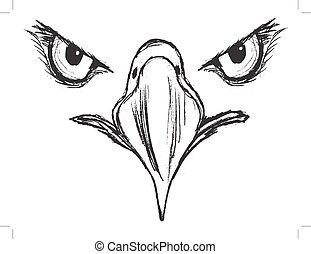 eyes of eagle