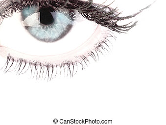 Eyes on a white background
