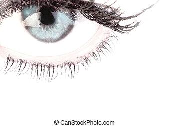 Eyes on a white background