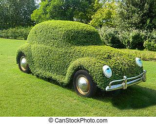 Eyes on the grassy car