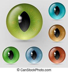 Eyes reptiles