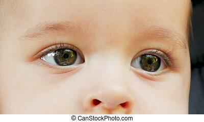 eyes six month old baby boy in nature