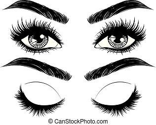 Female eyes with long black eyelashes and thick brows on white background.