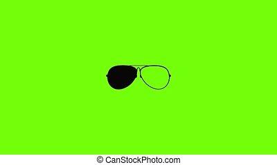 Eyewear icon animation best simple object on green screen background