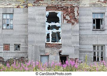 fából való, öreg, windows, törött, épület, nyers, lerombol, elhagyatott, ki