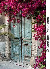 fából való, ciprus, öreg, bougainvillea, ajtó