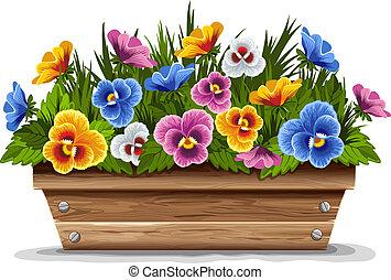 fából való, virágedény, noha, árvácskák