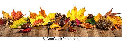 fából való, zöld, elszigetelt, ősz, műterem, asztal