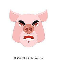 fâché, hog., pig., porcin, mal, grincheux, agressif, boar.