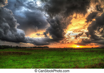 fält, över, dramatisk himmel, grön