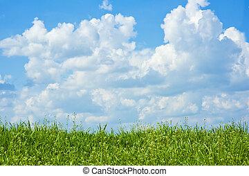 fält, av, gräs, sky, med, skyn