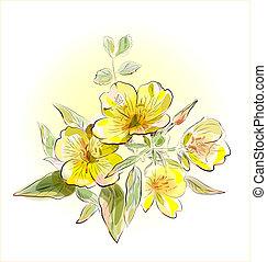fält, blomningen, gul
