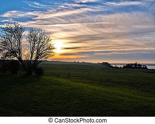 fält, dramatisk, grön, solnedgång, landskap
