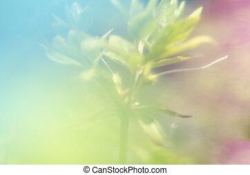 färg, abstrakt, grafisk, avbild, bakgrund