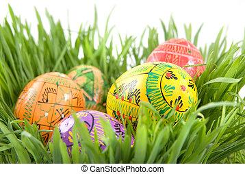 färg, påsk eggar, in, bygga bo, från, grönt gräs, vita