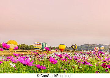 färgrik,  över, flygning, solnedgång, kosmos, Blomstrar, Sväller,  hot-air