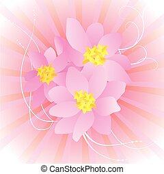 färgrik, bakgrund, med, rosa blommar