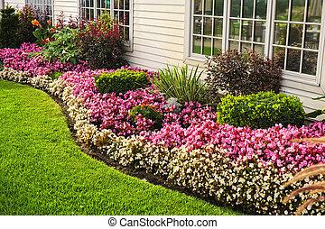 färgrik, blommaträdgård